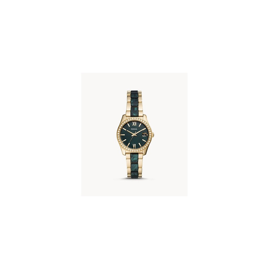FOSSIL - FS4676 Women's Watch